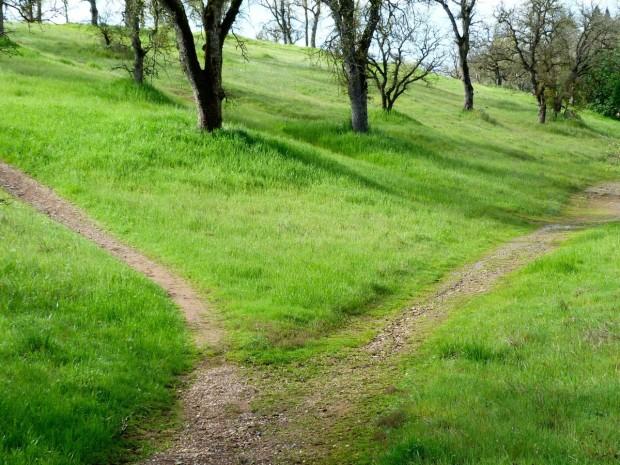 path_hiking_trail_grass_travel_landscape_outdoor_adventure-1259431